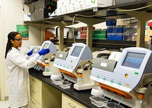 Bei komplizierten Experimenten oder Studien mit lebenden Patienten, kann man schnell überfordert werden. Wenn man merkt, dass die Doktorarbeit einen doch überhaupt nicht interessiert, kann man auch die Notbremse ziehen und sich eine neue suchen.